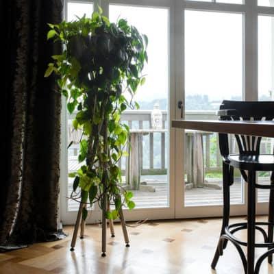 Blumenständer in Küche Edelstahl