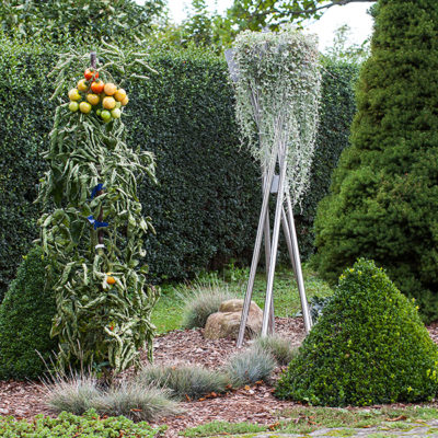 Pflanzenständer Edelstahl