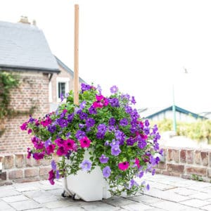 Pflanzkübel mit Bepflanzung